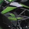 Kawasaki Z250SL Naked - 2014