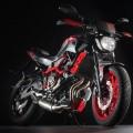 Yamaha MT-07 Moto Cage