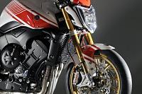 Yamaha FZ1 Abarth