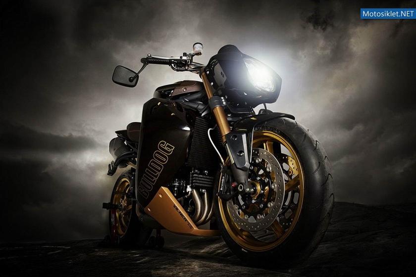 CustomBikeBulldog-by-Vliner-TriumphSpeedTripple-017