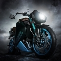 CustomBikeBulldog-by-Vliner-TriumphSpeedTripple-016