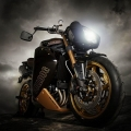 CustomBikeBulldog-by-Vliner-TriumphSpeedTripple-017