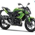 Kawasaki-Z250SL-Naked-2014-002