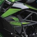Kawasaki-Z250SL-Naked-2014-003
