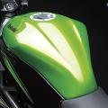 Kawasaki-Z250SL-Naked-2014-006