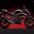 Kawasaki-Z250SL-Naked-2014-007