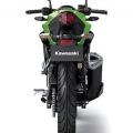 Kawasaki-Z250SL-Naked-2014-011