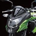 Kawasaki-Z250SL-Naked-2014-012