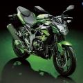 Kawasaki-Z250SL-Naked-2014-013