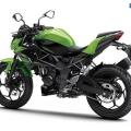 Kawasaki-Z250SL-Naked-2014-014