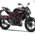 Kawasaki-Z250SL-Naked-2014-017
