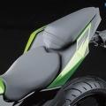 Kawasaki-Z250SL-Naked-2014-019