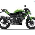 Kawasaki-Z250SL-Naked-2014-024