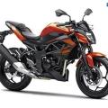 Kawasaki-Z250SL-Naked-2014-026