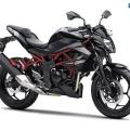 Kawasaki-Z250SL-Naked-2014-029