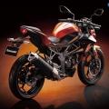 Kawasaki-Z250SL-Naked-2014-030