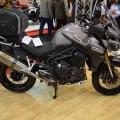 TriumphStandi-Motosiklet-Fuari-2014-024
