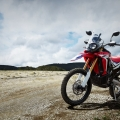 honda-crf250-rally_3