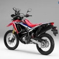 honda-crf250-rally_5