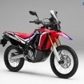 honda-crf250-rally_7